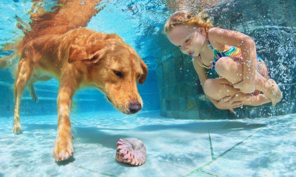 Pool Supplies Service and Repair Lagrange, Lanett, Lake ...